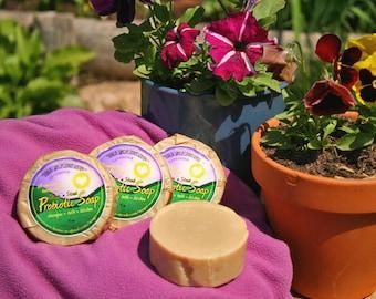 Probiotic Lavender Soap - 12 Bars Natural Shampoo/General Purpose Healthy Living Bath Bar