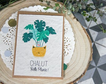 Postcard to plant: trawl beautiful plant - seeded paper
