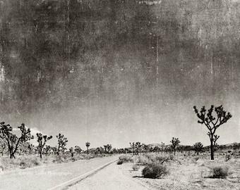 large wall art, black & white photography, Palm Springs, Joshua Tree, desert, travel landscape, nature, IKEA size print