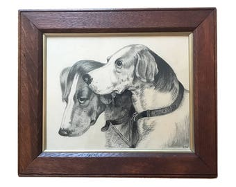 Victorian Drawing In Pencil/Charcoal Of Two Hound Heads In An Oak Frame Under Glass