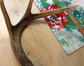 Set of Whitetail Deer Antlers, Six Points