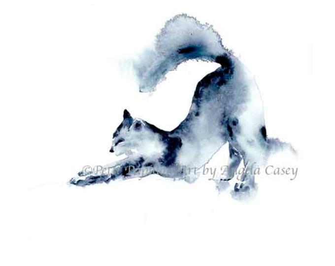 Indigo Cat II
