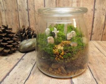 Grave Yard Terrarium - Live Moss - Grave Terrarium - Halloween - Cemetery - Head Stone- Haunted- Spooky - Handmade By Gypsy Raku