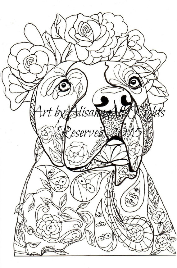 pitbull coloring pages - photo#5