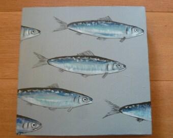 Sardines on canvas, grey background