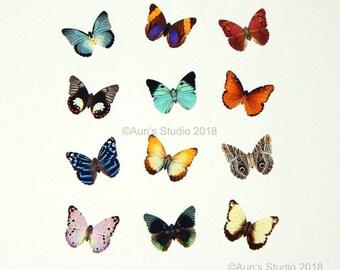 Small Paper Butterflies, Realistic 1 inch Paper Butterflies, 12 pieces