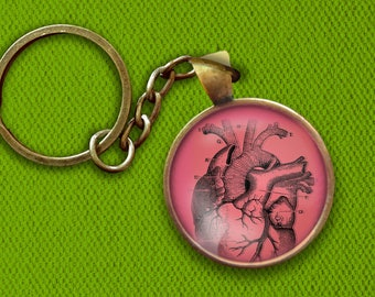 Anatomical Heart Pin, Magnet, Keychain, or Necklace