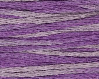 2316 Iris - Weeks Dye Works 6 Strand Floss
