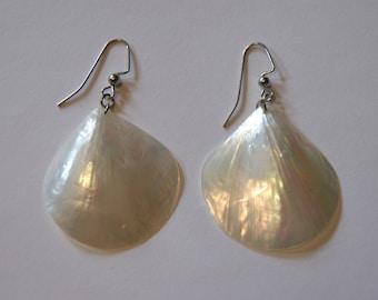 Translucent seashell earrings