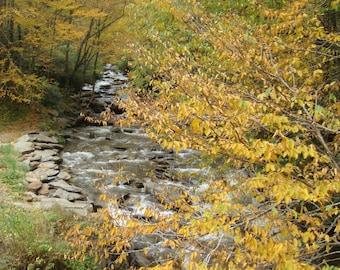 Smoky Mountain photograph, home decor, autumn