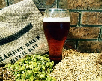 Oh-My-IPA 1 Gallon Beer Ingredient Kit - Brew in a Bag BIAB - Home Brew - India Pale Ale