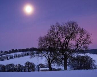 Winter Landscape 8 x 10 / 8x10 GLOSSY Photo Picture