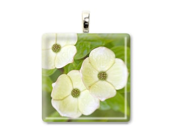Dogwood Trio - Glass Tile Photo Pendant - Original Photography