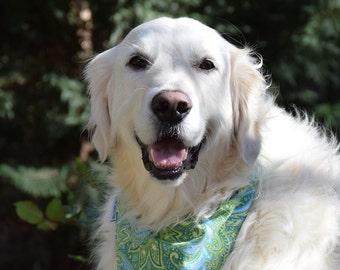 Dog Bandana, Dog Scarf, Personalized Dog Bandana with Paisley, Size Extra Extra Small to Extra Large, Reversible, Pet Accessories