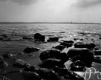 Sea the Horizon