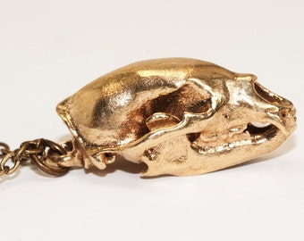 Bear Skull Necklace Bronze White Bronze Animal Skull Jewelry 3D Printed from CT Scans