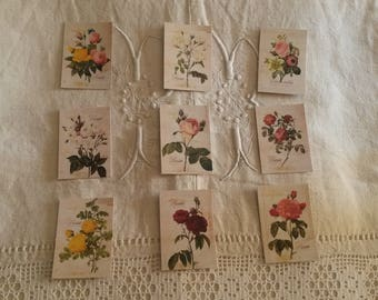 Set of 9 stickers for scrapbooking / botanist flowers / embellishments / floral stickers