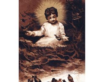 Christmas Card - Jesus Feeds Birds - Religious Greeting Card Christ