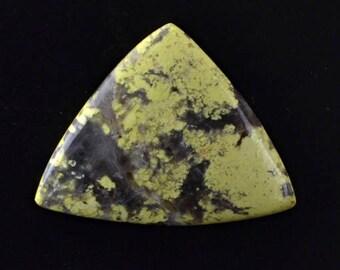 Lizard Stone 17.48cts Trillion Cabochon 30.20 X 23.70mm T1342 Cab Cabochon Yellow Loose Gem Gemstone Jewelry Making Rare