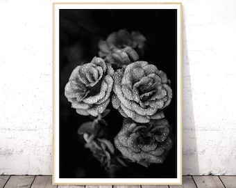 Black and White, Flower Photography, Peony Print, Roses Wall Art, Floral Printable Art, Large Poster, Living Room Decor, Gift Her, Boho Chic