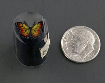 Monarch Murrine Boro Cane 11 grams - 116 H