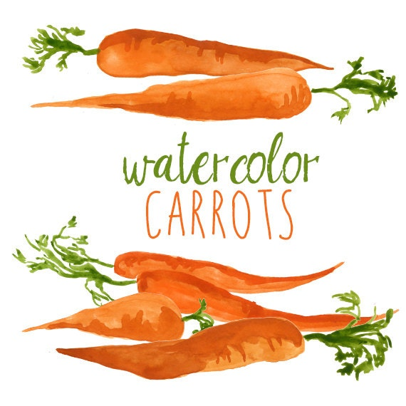 Watercolor Carrots Clip Art Set Veggies Watercolor Vegetable