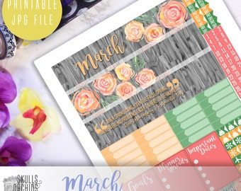 50% OFF! ERIN CONDREN March Monthly View Kit – Printable Planner Stickers