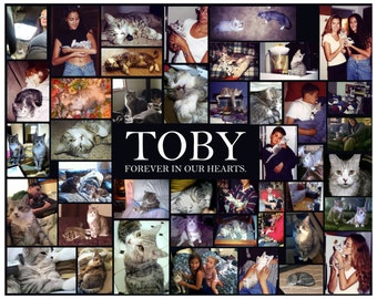 Personalized 16 x 20 Pet Memorial Collage