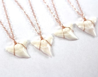 Rose Gold Shark Tooth Necklace, Dainty Rose Gold Necklace, Delicate Pink Gold Jewelry, 14k Rose Gold Filled Necklace, Rose Gold Jewelry