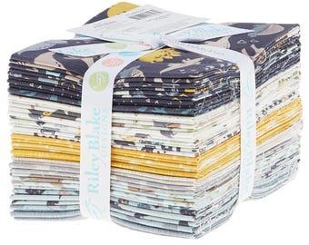Riley Blake Fabric - Fossil Rim by Deena Rutter Fat Quarter Bundle 21 count FQ-6610-21