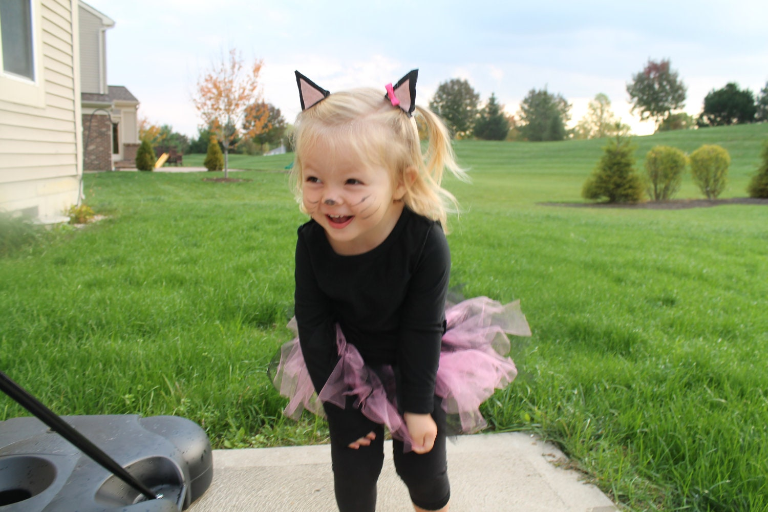 Cat costume-Toddler and Infant Cat Costume Toddler Costume
