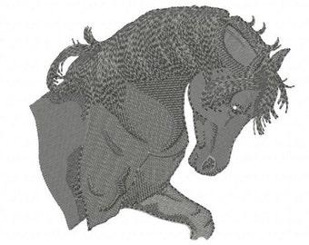 ARABIAN HORSE - Machine Embroidery Design