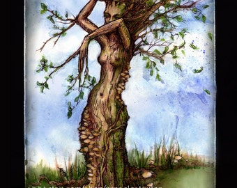 The Elm Maid by Renae Taylor   .......POST Card
