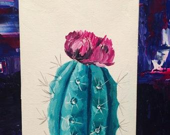 Pink Flower Cactus