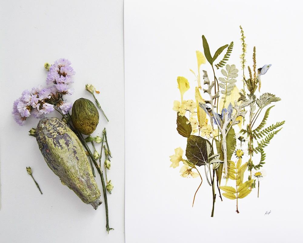 Tolle Eingerahmt Gepresste Blumen Bilder - Rahmen Ideen ...