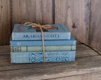 Vintage Book Bundle French Country Book Decor, vintage books, decorative book binding, book decor, rustic wedding, bookshelf styling