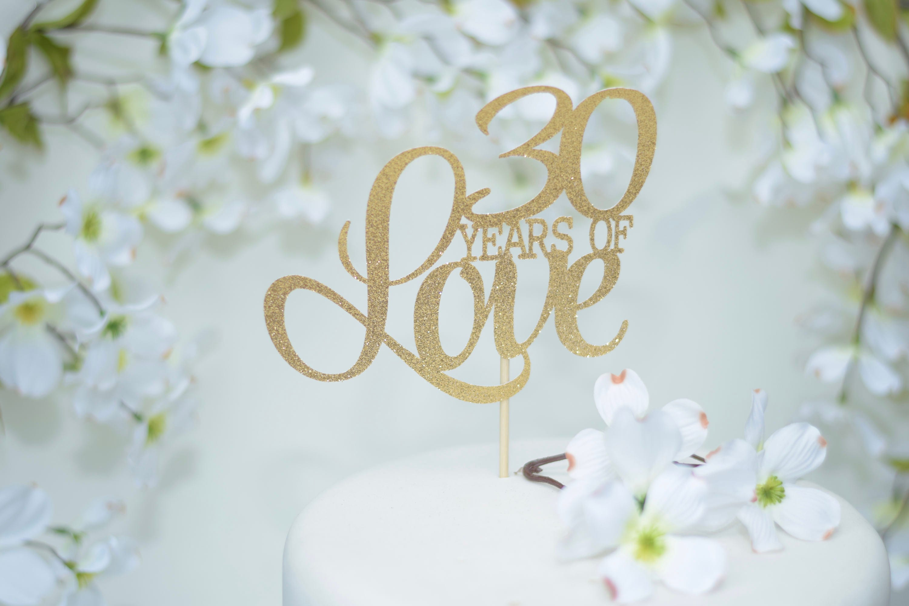 30th wedding anniversary cake topper 15th anniversary vow