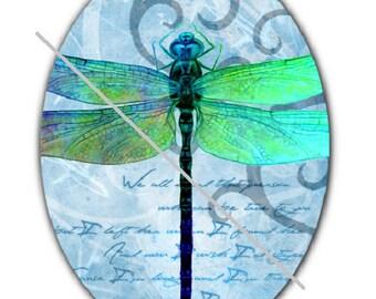 18x25cm, dragonfly, blue background