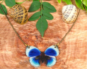 Butterfly Necklace, Butterfly, Butterfly Jewelry, Gifts for her, Shrink Jewelry,Insect Jewelry, Bug, Colourfull Butterflies