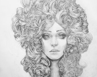 Original Pencil Drawing - Camelia