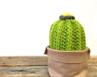 Crochet barrel cactus in felt pouch.