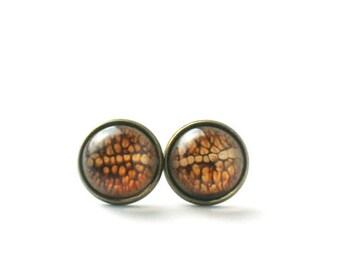 Brown resin post earrings, Vintage post earrings, Boho brass stud earrings, Science brass jewelry, Brown post earrings, Rustic jewellery
