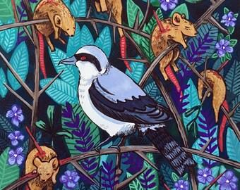 Shrike Original Gouache Illustration - Butcher Bird Painting