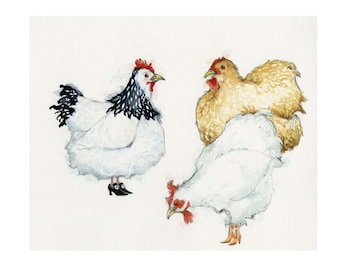 Chicken Print Hens wearing shoes illustration 8x11