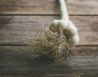 Rustic Garlic, Food Photography, Rustic Photo Print, Wall Art, Kitchen Decor, Dining Room Decor, Home Decor, Restaurant Decor