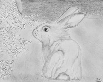 Rabbit pencil drawing Pet Cuddly rabbit 21 x 14.8 cm 2018