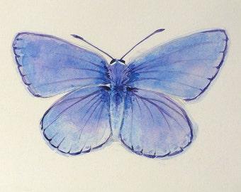 Periwinkle Butterfly Original watercolor butterfly art nature art periwinkle blue nature art