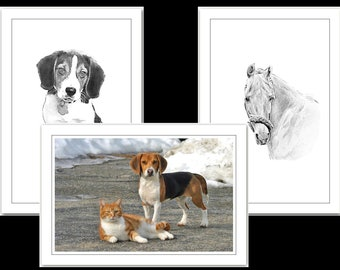 Animal Friends - Horse, Dog & Cat. Set of 3 cards