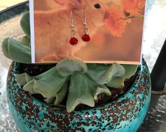 Red Small Dangle Earrings