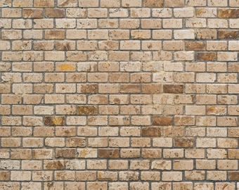 Vinyl Photography  Backdrop Photo Prop - Old Marble Brick